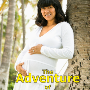 Adventures Motherhood CD sleeve